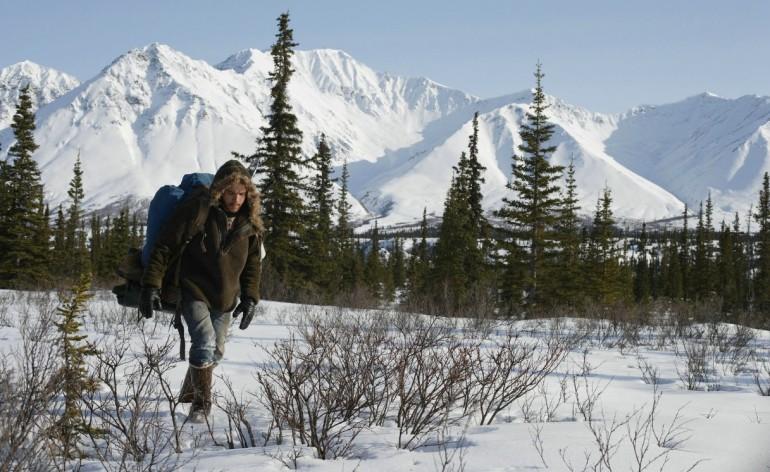 viajar, na natureza selvagem, into the wild, vontade