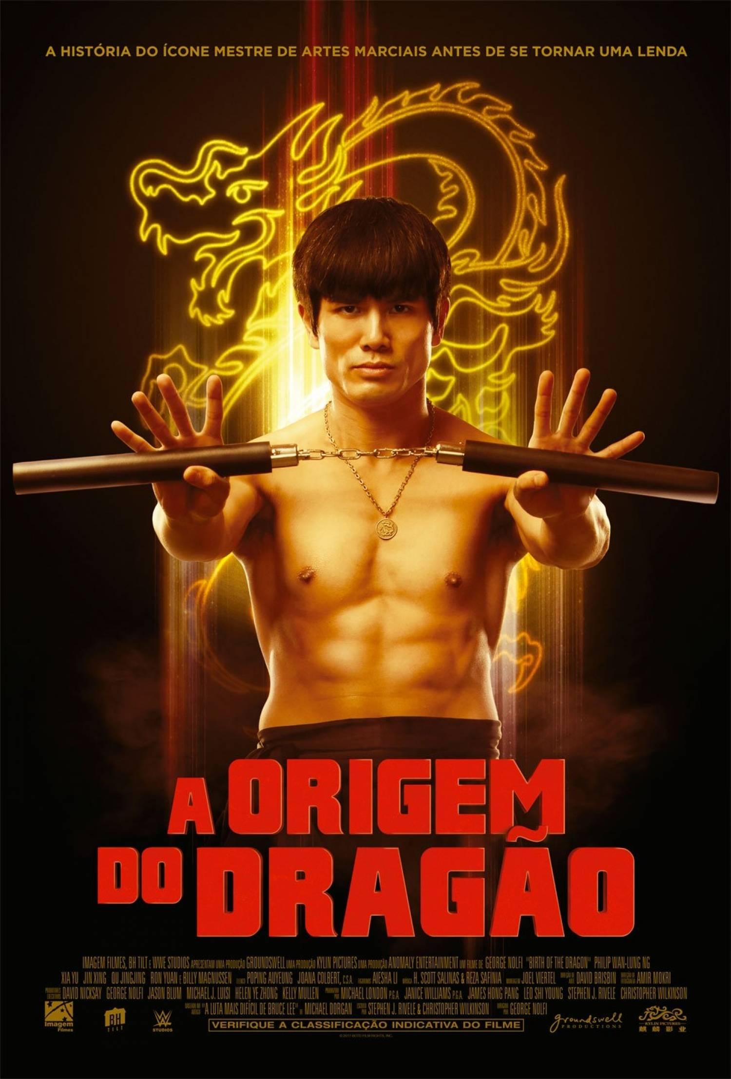 Poster de A Origem do Dragão